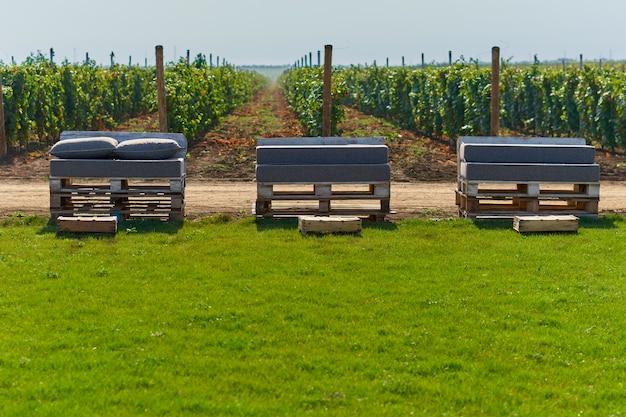 Chaise de palettes sur la pelouse du vignoble