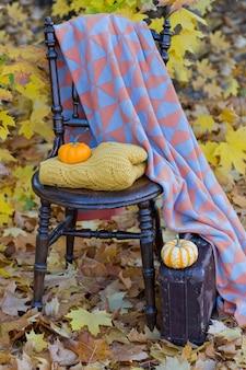 Sur la chaise se trouve un pull tricoté, des citrouilles orange, un livre, un tapis, près du sol se trouve une vieille valise