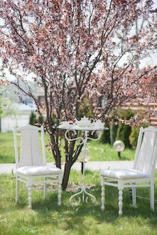 Chaises de décoration de mariage avec une table, des tasses, une théière