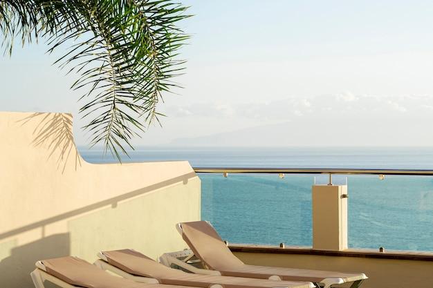 Chaises longues avec cocotier au bord de la mer