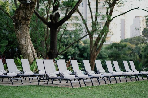 Chaises longues confortables disposées dans une rangée sur un beau paysage