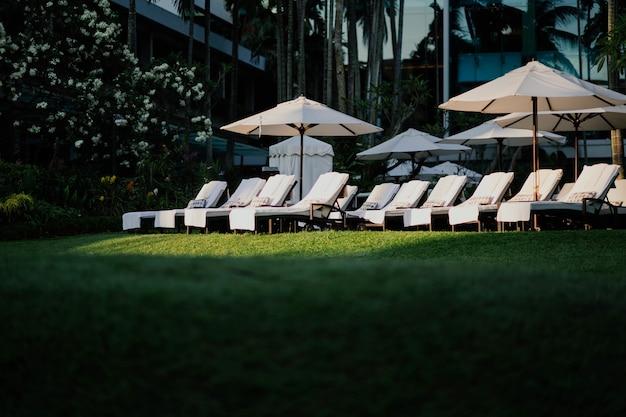 Chaises longues sur l'herbe en été