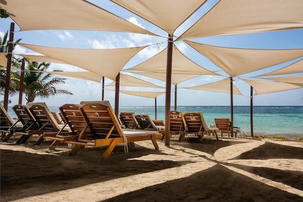 Des chaises longues placées les unes à côté des autres sous des parasols sur la plage