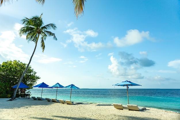 Chaises de plage de luxe des maldives avec ciel bleu d'eau de mer claire et cocotier