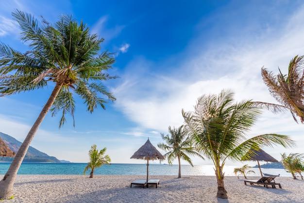 Chaises de plage, parasol et palmiers sur la belle plage pour des vacances et détente à l'île de koh lipe, thaïlande