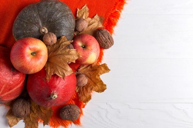 Châle chaud orange vif, citrouilles, baies, pommes, noix et feuilles jaunes sèches sur fond blanc, ambiance automnale, fond. récolte .