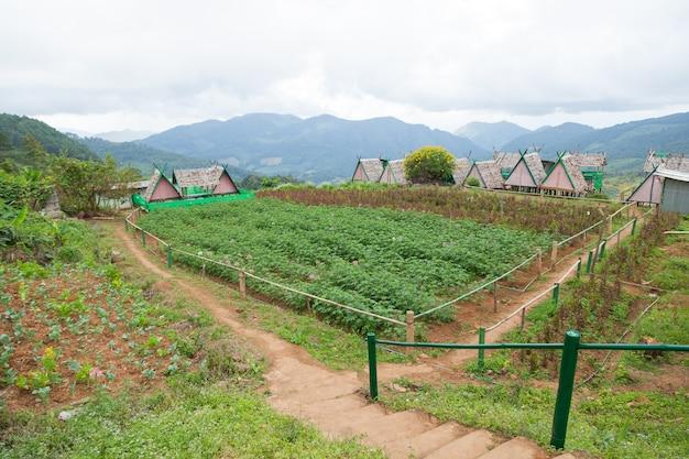 Chalet est planté à proximité des zones agricoles.