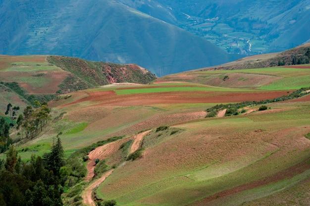Champ agricole dans la vallée sacrée, région de cuzco, pérou