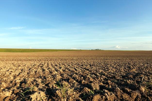 Champ agricole labouré, paysage d'été après la récolte