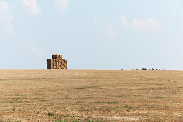 Champ agricole de paille pile carrée où la paille collectée