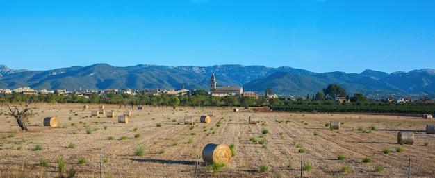 Champ agricole près des montagnes
