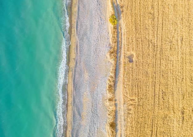 Champ de blé et route non goudronnée le long de la plage de sable, vue drone directement au-dessus