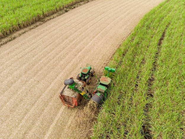 Champ de canne à sucre aérien au brésil tracteur travaillant, agro-industrie