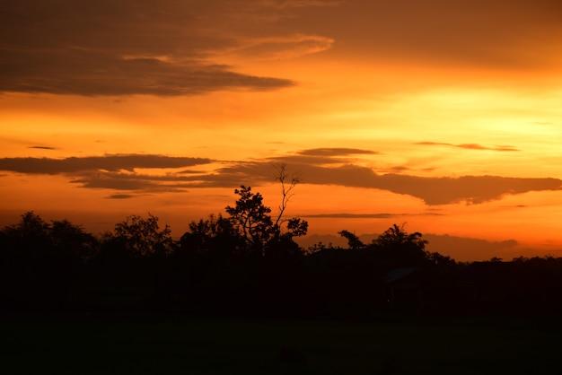 Champ et ciel avec nuages sombres