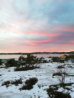 Champ couvert de neige entouré d'arbres sous un ciel nuageux pendant le coucher du soleil en norvège