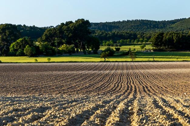 Champ cultivé avec sol labouré de différentes couleurs.