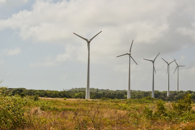Champ éolien avec des éoliennes, produisant de l'énergie éolienne sous un ciel bleu, énergie renouvelable. - image