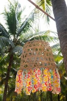 Champ d'été de cocotier