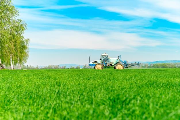 Champ avec de l'herbe pour le bétail et la fertilisation du tracteur