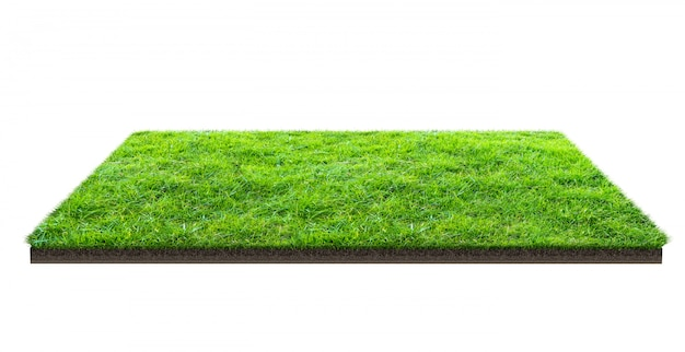Champ d'herbe verte isolé sur blanc avec un tracé de détourage. terrain de sport. jeux d'équipe d'été.