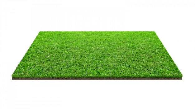 Champ d'herbe verte isolé sur blanc avec un tracé de détourage.