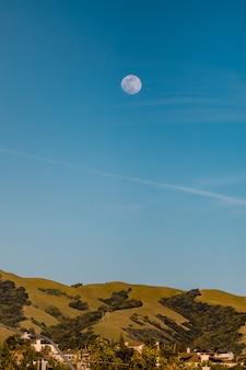 Champ d'herbe verte sous un ciel bleu pendant la journée