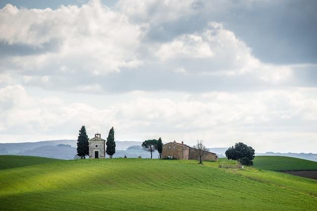 Champ herbeux avec des arbres et des bâtiments au loin sous un ciel nuageux