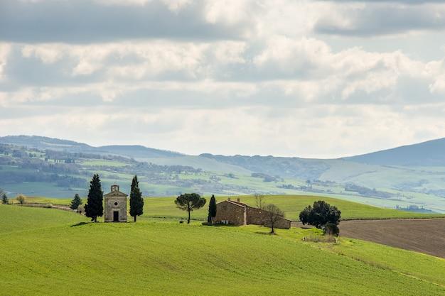 Champ herbeux avec des arbres verts et une maison au loin sous un ciel nuageux