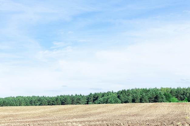 Champ labouré agricole et ciel bleu