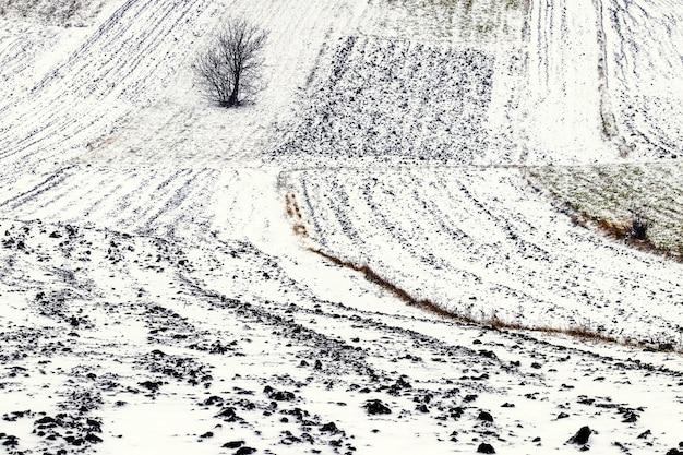 Champ labouré enneigé. terres agricoles en hiver