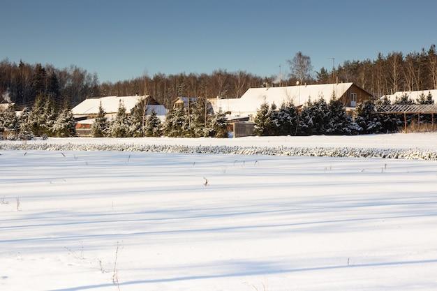 Champ neigeux par une journée froide. maison en bois dans la neige près de la forêt.