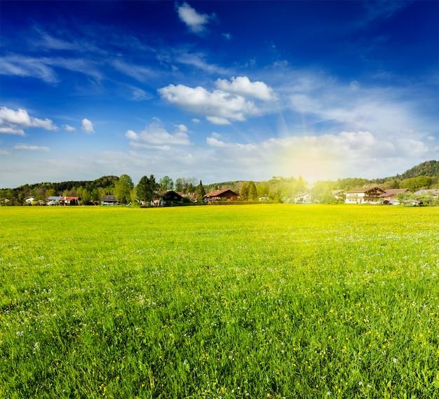 Champ de prairie de campagne avec soleil et ciel bleu