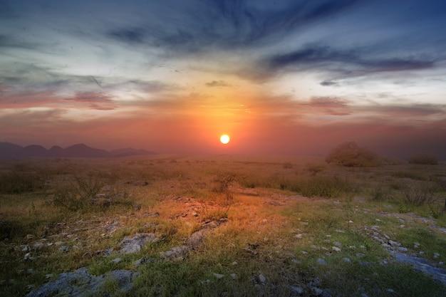 Champ de prairie avec un ciel au lever du soleil