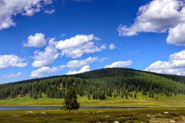 Champ, rivière, arbres sur les collines contre le ciel bleu avec des nuages blancs.