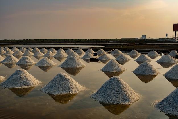 Champ de sel de mer en thaïlande