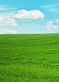 Champ vert et ciel bleu avec des nuages belle prairie comme nature et fond environnemental