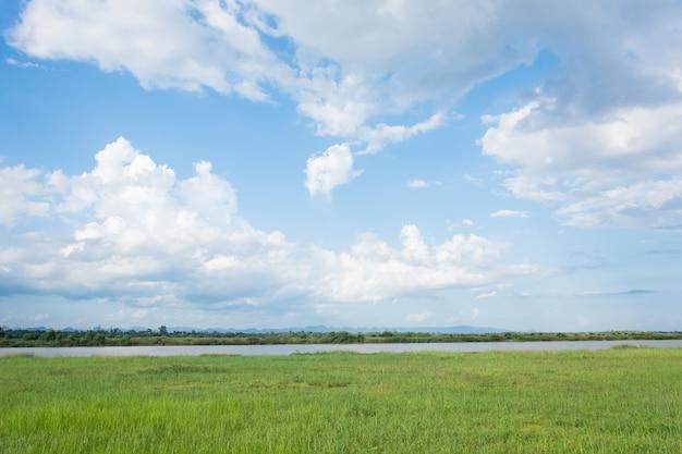 Champ vert et ciel bleu avec des nuages légers