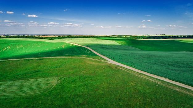 Le champ vert est au coucher du soleil avec le drone