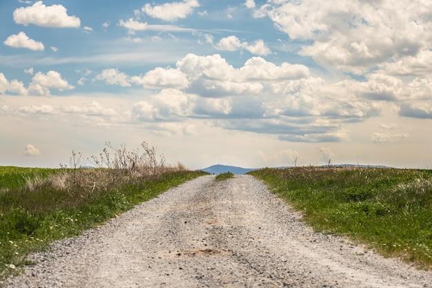 Champ vert frais et ciel bleu au printemps, vue sur le pré avec un chemin de terre.