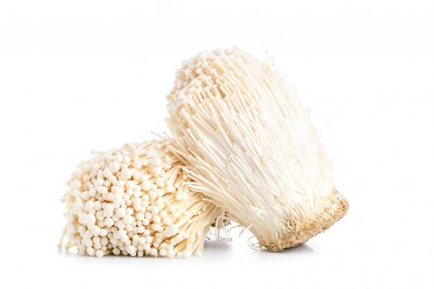 Champignon aiguille d'or frais blanc ou champignon enoki isolé sur blanc