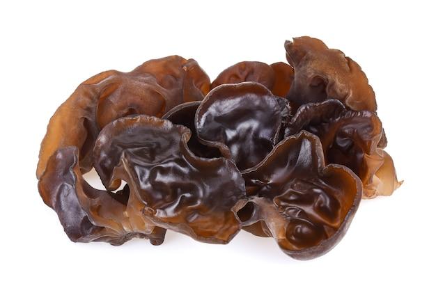 Champignon noir ou champignon de l'oreille isolé sur fond blanc