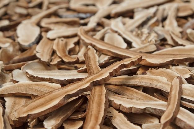 Champignon reishi, champignon sec pour la phytothérapie