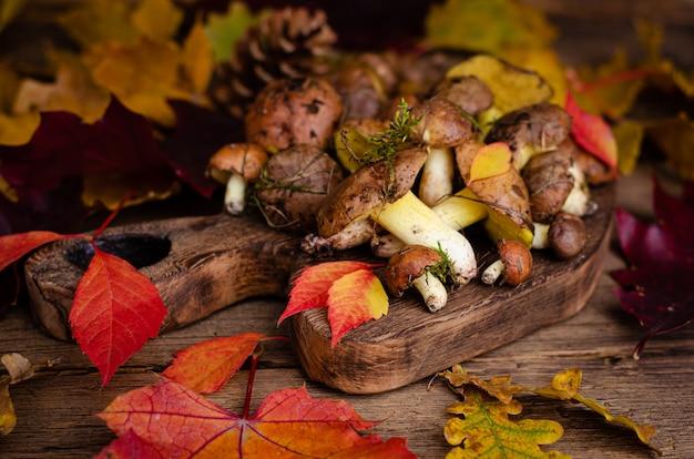 Champignons d'automne comestibles. alimentation biologique. champignons gras bruts sur fond en bois rustique