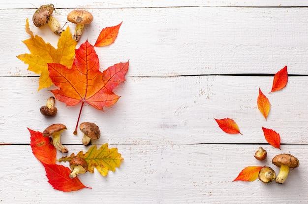 Champignons forestiers d'automne à l'orange laisse sur un fond en bois blanc.