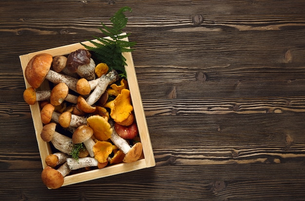 Champignons frais dans une boîte sur un fond rustique en bois.