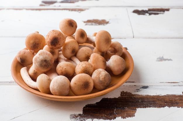 Champignons sauvages agaric au miel cru sur une assiette sur une table en bois.