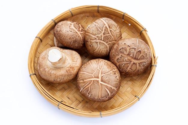 Champignons shiitake frais en bambou en bois sur fond blanc.