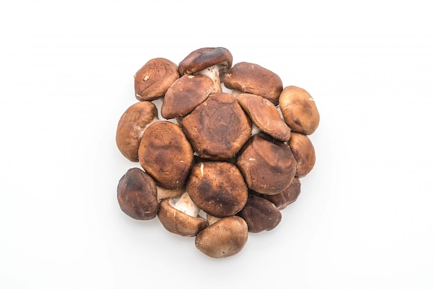 Champignons shiitake frais