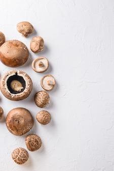 Champignons shiitake et portobello sur fond blanc. espace de vue de dessus pour le texte.