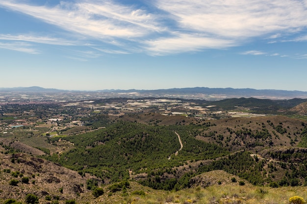 Champs et cultures avec de nombreuses serres dans la région espagnole de murcie célèbre pour son paprika